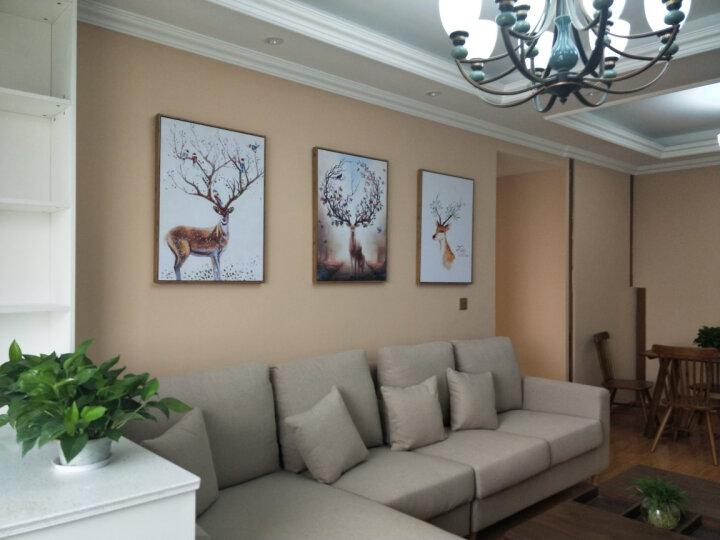 米罗映画  客厅装饰画北欧麋鹿壁画沙发背景墙三联挂画餐厅玄关卧室有框画发财鹿 招财鹿(一套三幅) 50*70 黑色框 晒单图