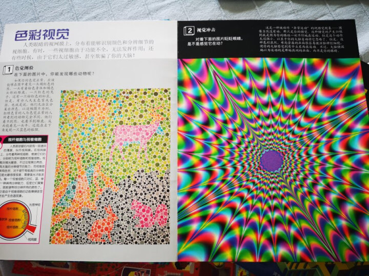 DK炫彩视觉幻象 晒单图