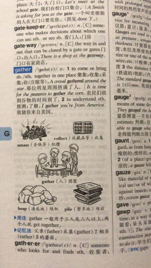 学生实用英汉双解大词典第2版大开本 英语字典词典工具书小学初中高中学生实用牛津词典大学四六级 晒单图
