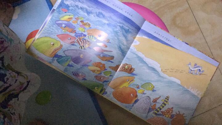 一条聪明的鱼 幼儿图书 绘本 早教书 儿童书籍 晒单图