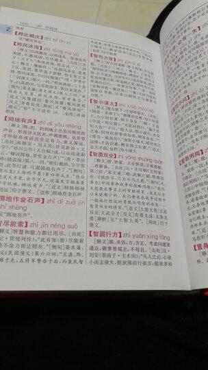 新华汉语词典 彩色版 最新修订版 小学生多功能词典 2020年新版中小学生专用辞书工具书字典词典 晒单图