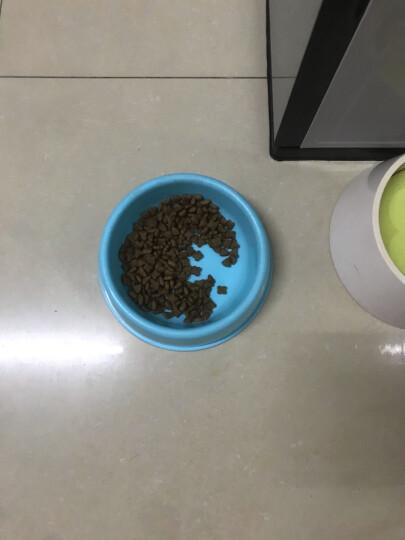 ROYAL CANIN 皇家狗粮 A3优选幼犬狗粮 全价粮 3kg 怀孕及哺乳期母犬 全犬种通用幼犬粮 开启全面营养第一步 晒单图