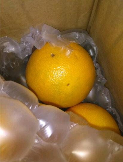 果雪语 南非西柚葡萄柚8个 单果约260-350g  红心柚子 进口新鲜水果 晒单图