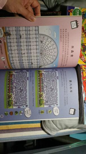 英国儿童逻辑思维训练培养丛书-专注力记忆力观察力思维力(风靡欧洲5分钟脑力训练 套装14册) 晒单图
