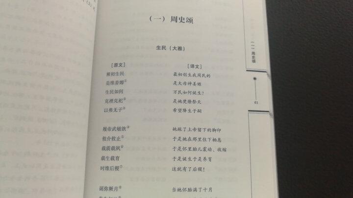雅与颂:华夏上古史诗新考 晒单图