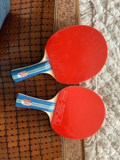 双鱼 乒乓球桌乒乓球台233 室内家用可折叠带轮兵乓球台乒乓球案子 晒单图