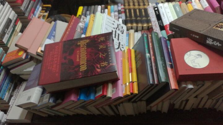 鳄鱼街: 布鲁诺·舒尔茨小说全集 晒单图