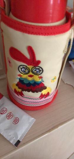 杯具熊(BEDDYBEAR)儿童保温杯带吸管儿童水杯316不锈钢保温儿童水壶630ML升级款-黄色小马 晒单图