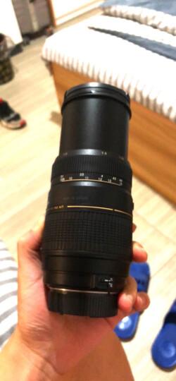腾龙(Tamron)A001 SP AF70-200mm F/2.8 Di LD MACRO全画幅大光圈中远摄变焦镜头 人像(尼康单反卡口) 晒单图