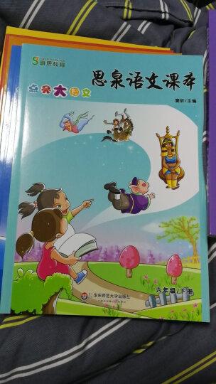 思泉语文课本·点亮大语文(6年级)(下册)(2013春) 晒单图