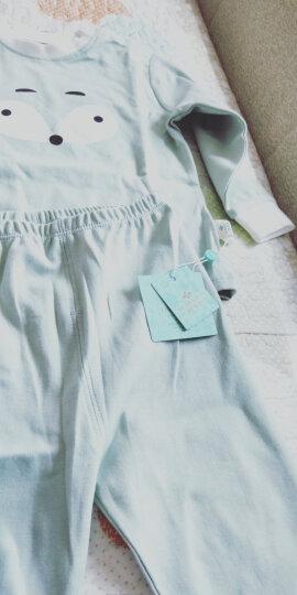 俞兆林(YUZHAOLIN) 儿童柔棉睡衣套装男女童家居服2件套小孩衣服中小童学生空调服春夏新品 菠萝小西瓜浅兰 120CM 晒单图