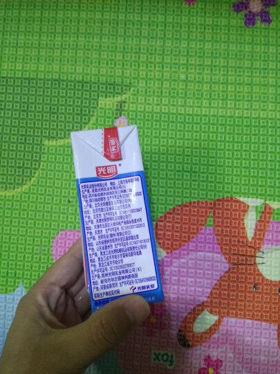 光明 纯牛奶250ml*24盒/箱 晒单图