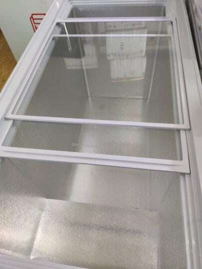 星星(XINGX) 305升 商用单温冰柜  单箱变温冰箱 冷藏冷冻蝴蝶玻璃门冷柜 BD/BC-305EH 晒单图
