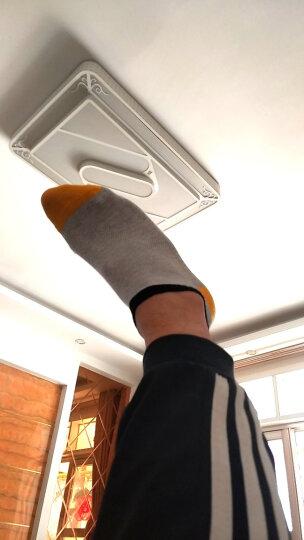 浪莎纯棉男士袜子短袜男夏季低帮舒适全棉防臭透气网眼船袜 100%简约网眼款6双 均码 晒单图