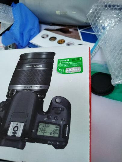 佳能(CANON) EOS 77D 单反数码相机 入门级 佳能501.8STM拆定焦镜头 官方标配(不含礼包) 晒单图