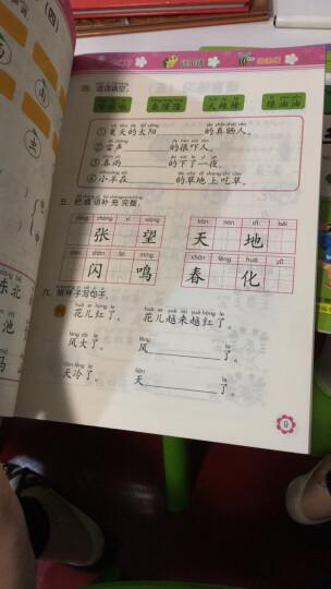 宝宝蛋-幼小衔接每日一练:数学(加减法)+拼音(单韵母、声母)+语言(套装8本) 晒单图