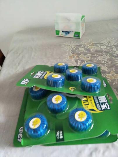 绿伞 洁厕宝蓝泡泡 马桶清洁50g*15 洁厕块 厕所除臭去异味 马桶自动清洁剂洁厕灵 晒单图