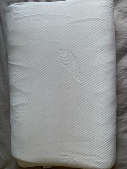 PARATEX泰国进口天然乳胶枕头枕芯波浪枕 进口成人护颈枕颈椎枕 平板波浪枕 晒单图