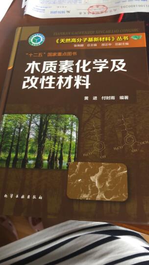 木质素化学及改性材料 晒单图