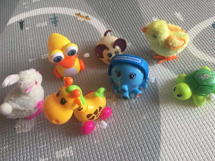 儿童玩具 80后经典怀旧发条铁皮青蛙男孩女孩上链上弦跳跳蛙爬行益智怀旧礼物 10款装(款式需备注 不备注随机发) 晒单图