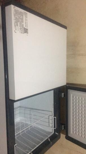 【品牌直营】华美(Huamei) 节能双温冰柜 卧式冰箱商用 家用小型迷你冰箱冷柜 节能冷藏保鲜柜 晒单图