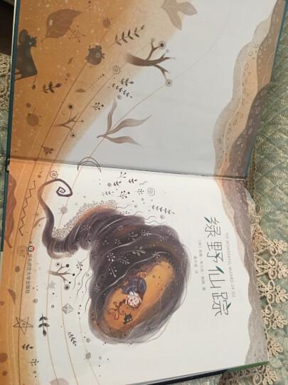 作家榜经典:父与子全集(童话大王推荐版本!3岁-7岁亲子共读,7岁以上自主阅读!赠父与子趣味贴纸) 晒单图