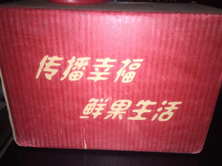 悠乐果 新疆库尔勒香梨1.5kg 单果约80-120g 新鲜水果 顺丰直发 晒单图