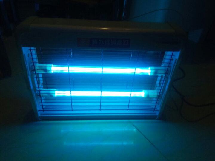 【次日达】金卫士(GOLDVISS)紫外线消毒灯家用卧室杀菌灯臭氧除螨医用幼儿园紫外线灯20W基础款 晒单图
