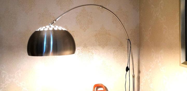 古普(Gupu)落地灯 现代简约创意钓鱼灯 led护眼遥控阅读落地灯 客厅书房麻将房卧室床头灯 中号+9 瓦LED遥控调光调色 晒单图