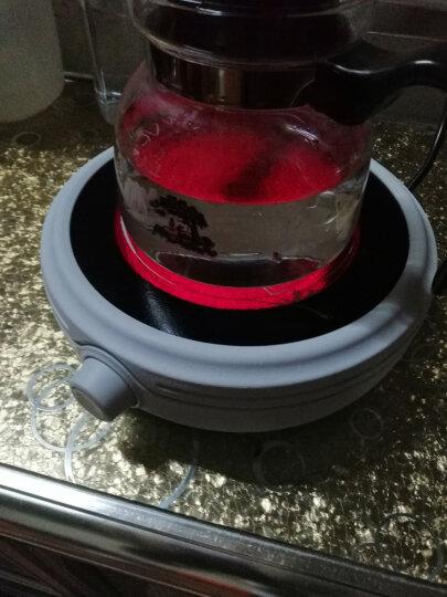 诺洁仕(LOCUS)静音白色迷你电陶炉家用功夫养生蒸煮茶器小电热泡茶机光波电磁炉配玻璃陶瓷壶 淡雅白茶炉+陶瓷壶套装 晒单图