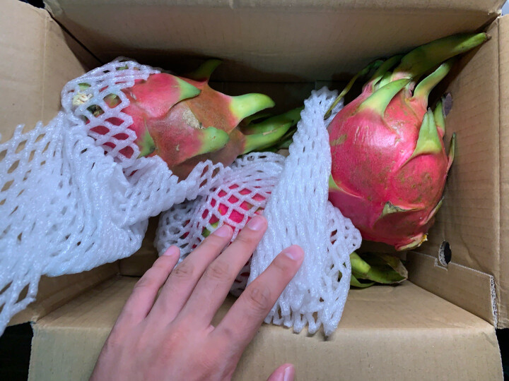 越南进口白心火龙果 2个装巨无霸大果 单果约550-650g 新鲜水果 晒单图