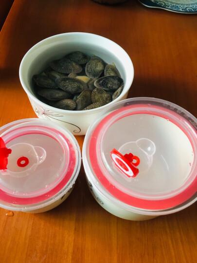 瓷魂 陶瓷韩式饭碗泡面碗带盖微波炉专用保鲜碗三支套装 冬樱 晒单图