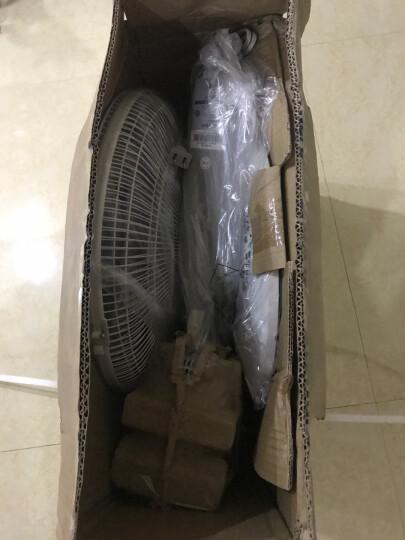 艾美特(Airmate)电风扇 家用五叶遥控落地扇 柔风静音 FS40103R 晒单图