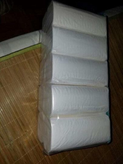 清风 (APP) 卷纸卫生纸 马蹄莲3层80克*10卷无芯卷纸 (平纹长卷) 晒单图