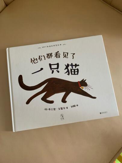 凯迪克银奖绘本:他们都看见了一只猫 晒单图