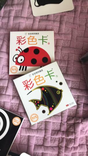 海润阳光 宝宝早教卡(套装共4册) 晒单图