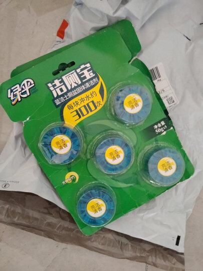 绿伞 蓝泡泡洁厕宝 茉莉花香50g*5 洁厕块 厕所除臭马桶自动清洁去异味洁厕剂 晒单图