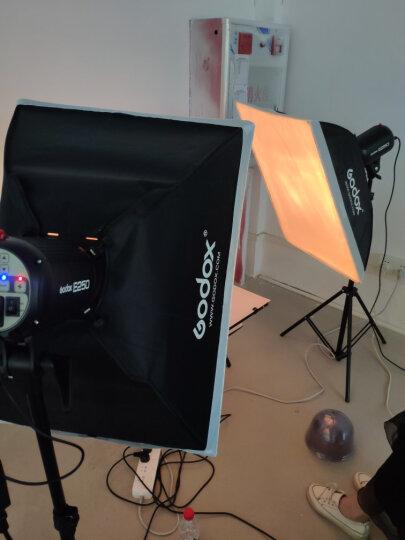神牛E250W摄影灯摄影棚闪光灯鞋包/服装/文玩/家具/人像/模特/证件照/电商拍摄影室补光灯 三灯-A套装(小商品拍摄) 晒单图