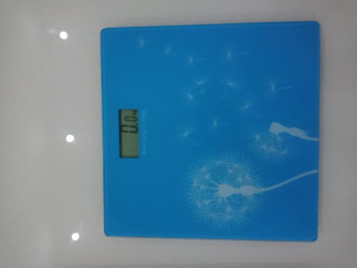 拜杰(Baijie)电子人体秤体重称 家用钢化玻璃人体秤精准台称电子称 白色 晒单图