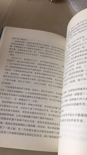 鲁滨孙漂流记 语文新课标必读丛书 教育部推荐中小学生必读名著 晒单图