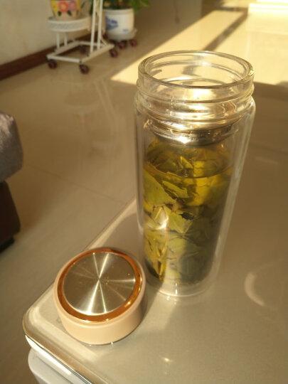 富光 格调系列双层玻璃杯 男女士时尚便携杯子泡茶杯 带茶格玻璃水杯 500ml 蓝色(WFB1020-500) 晒单图
