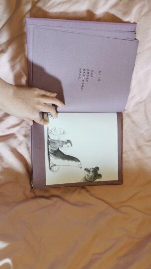 鼠小弟的小背心 (爱心树童书) 晒单图