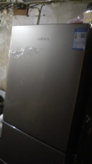 新飞(Frestec)209升三门小冰箱 家用小型 电冰箱 软冷冻室 节能保鲜 静音省电(香槟金)BCD-209DMK 晒单图