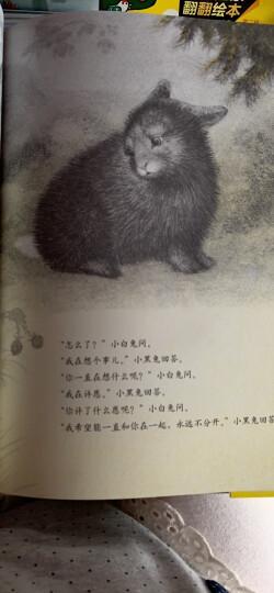 凯迪克大奖绘本:赶牛车的人(2016版) (爱心树童书) 晒单图