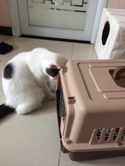 憨憨乐园 宠物航空箱狗狗外出箱子猫包托运旅行箱运输便携咖啡色长度66宽度45高度46cm(适合25斤以下宠物) 晒单图