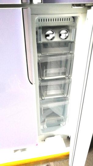 尊贵(ZUNGUI)BCD-358CA 358升 铜管十字对开门冰箱 家用多门四门 静音透视窗电冰箱 百合白实体门 晒单图