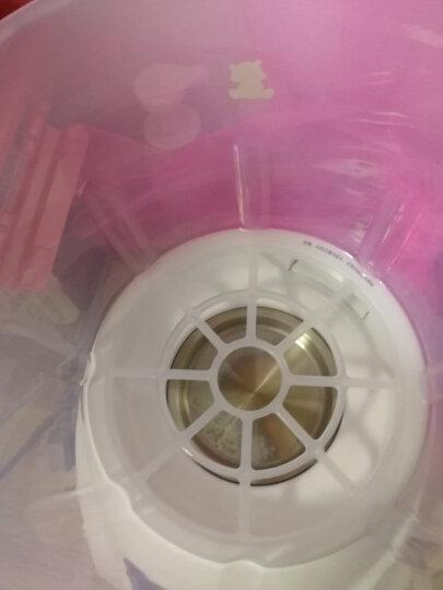 小白熊 (Snow Bear) 婴儿奶瓶蒸汽消毒器带烘干 宝宝消毒锅 HL-0681 晒单图