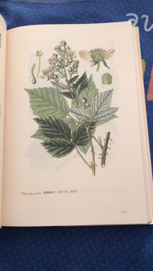 园艺花卉图谱 晒单图