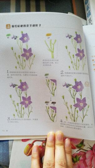 花之绘:38种花的色铅笔图绘 晒单图