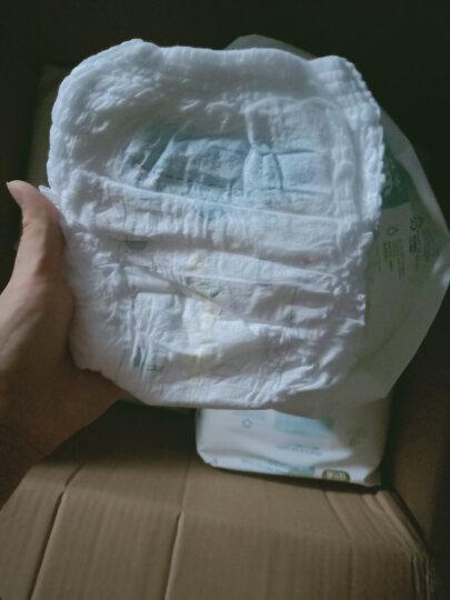 五羊(FIVERAM)拉拉裤 瞬吸棉柔成长裤 XXL76片 加加大号尿不湿 (15kg以上) 晒单图